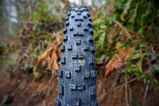 Maxxis FOREKASTER 27,5 EXO TR 2,6""